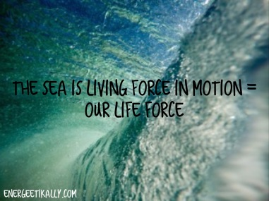 sea life force